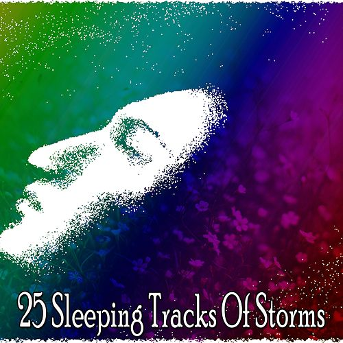 25 Sleeping Tracks Of Storms de Thunderstorm Sleep