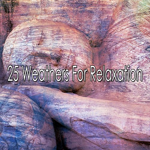 25 Weathers For Relaxation de Thunderstorms