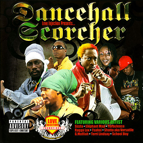 Dancehall Scorcher by Various Artists