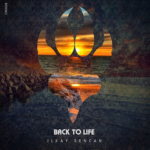 Back to Life by Ilkay Sencan