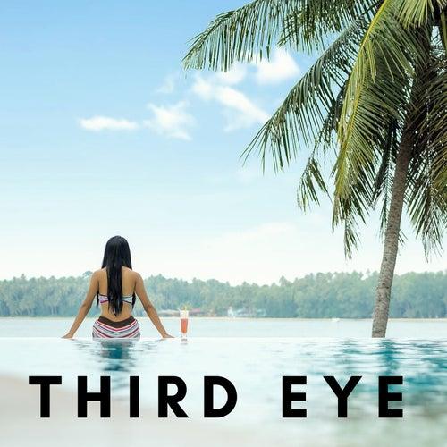 Third Eye: Blissful Music, Sounds of Nature, Yoga Harmony, Chakra Activation by Kapa Nyolo