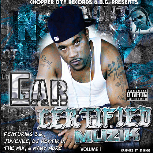 Certified Muzik by Various Artists