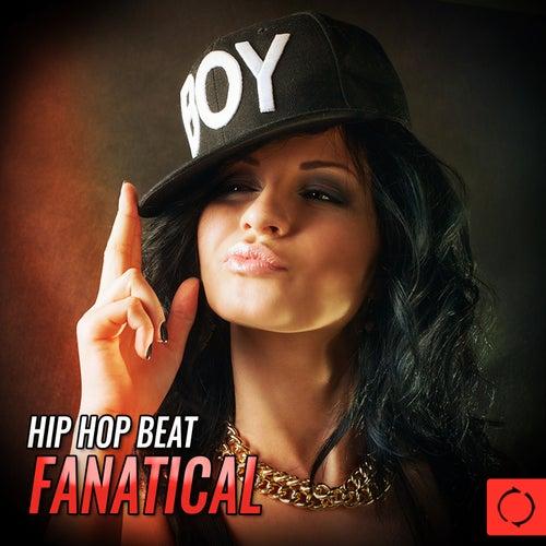 Hip Hop Beat Fanatical de Various Artists