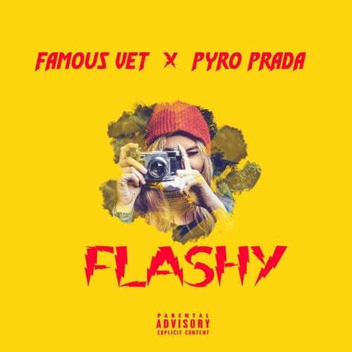 Flashy (feat. Famous Vet) by Pyro Prada