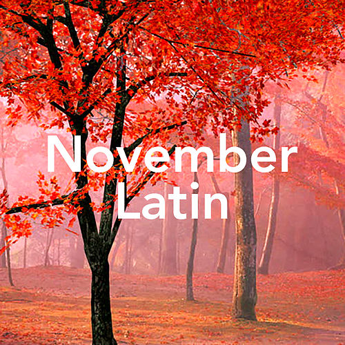 November Latin by Various Artists