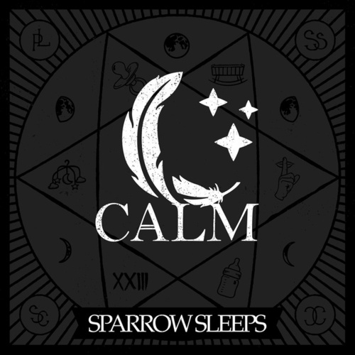 Calm: Lullaby renditions of Bayside songs de Sparrow Sleeps