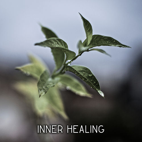Inner Healing – Pure Chill, Yoga Music, Deep Meditation, Zen Music, Chill Out 2017, Buddha Lounge by Relaxation - Ambient
