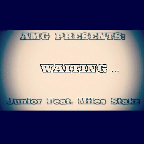 Waiting (feat. Miles Stakz) by junior