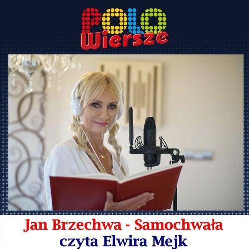Polo Wiersze Jan Brzechwa Samochwała By Elwira Mejk