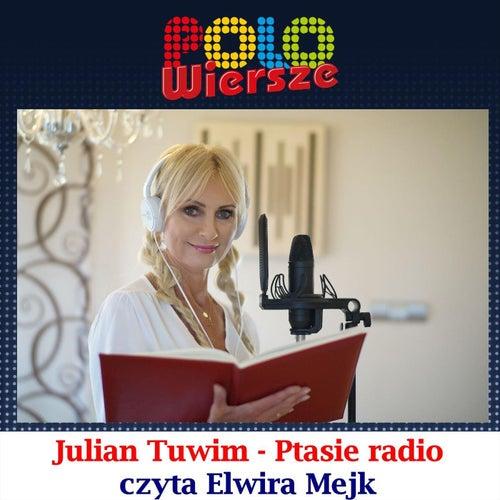 Polo Wiersze Julian Tuwim Ptasie Radio De Elwira Mejk