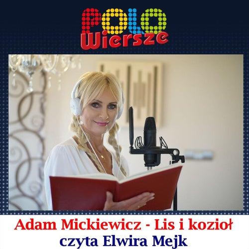 Polo Wiersze Julian Tuwim Ptasie Radio By Elwira Mejk