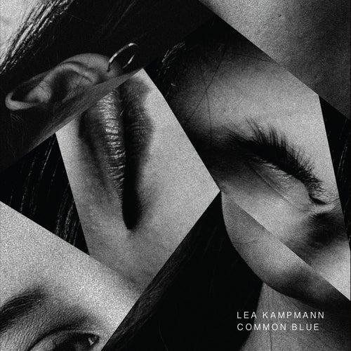 Common Blue by Lea Kampmann