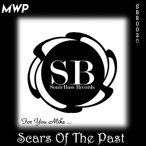 Scars Of The Past by M.W.P.