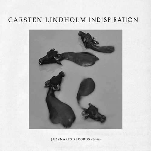 Indispiration by Carsten Lindholm