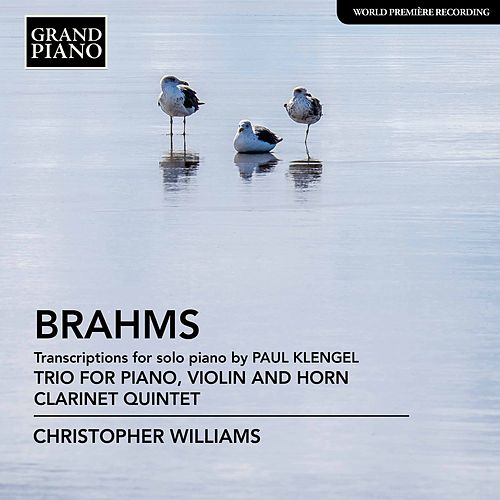 Brahms: Transcriptions for Piano de Christopher Williams