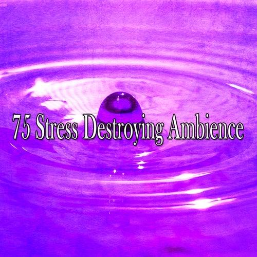 75 Stress Destroying Ambience de Meditación Música Ambiente