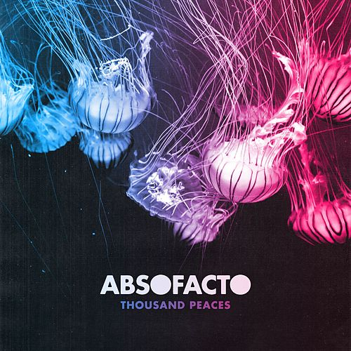 Thousand Peaces von Absofacto