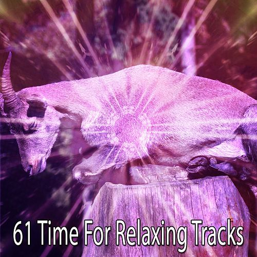 61 Time For Relaxing Tracks von Best Relaxing SPA Music