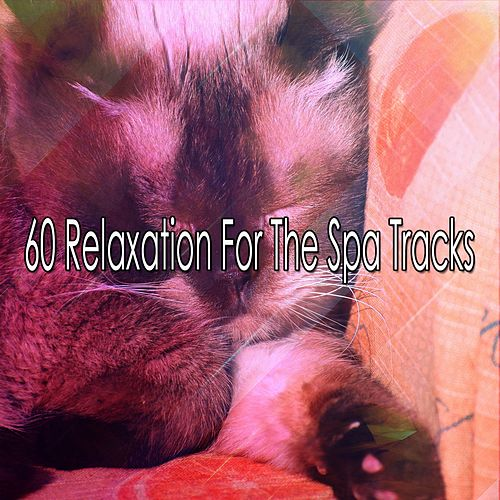 60 Relaxation For The Spa Tracks by Relaxing Spa Music