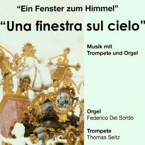 Una finestra sul cielo, musica per tromba ed organo by Federico del Sordo