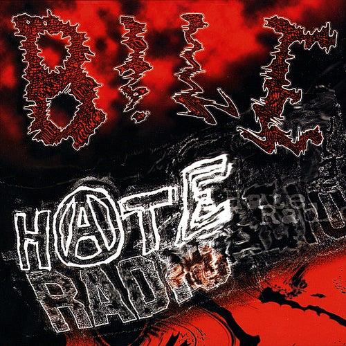 Hate Radio by Bile
