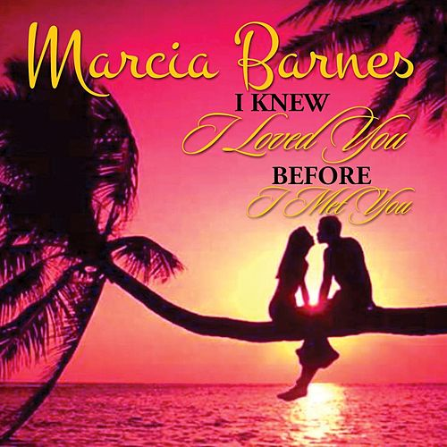 I Knew I Loved You Before I Met You de Marcia Barnes