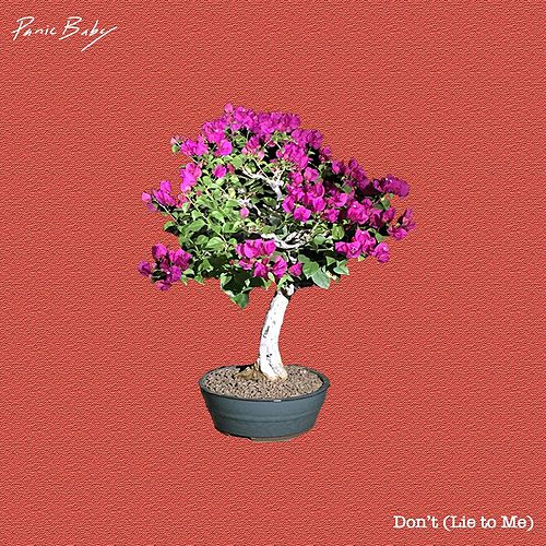 Don't (Lie to Me) von Panic Baby