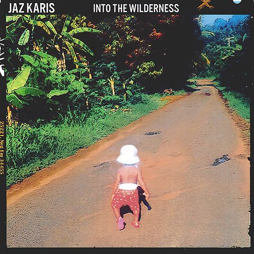 Into The Wilderness de Jaz Karis