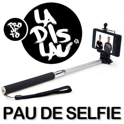 Pau de Selfie de Projeto Ladislau
