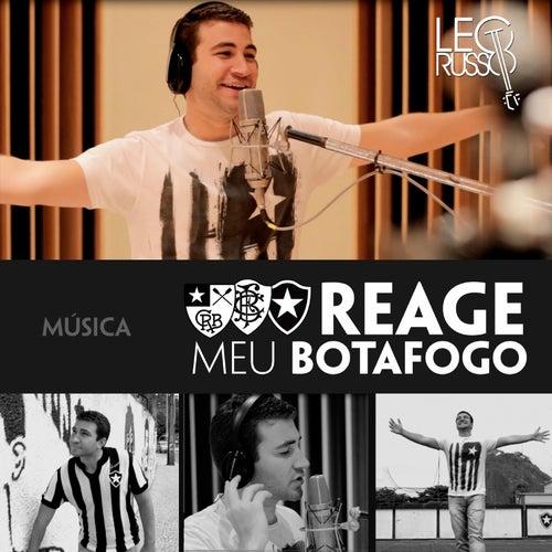 Reage Meu Botafogo de Leo Russo