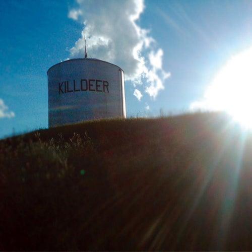 Summer Panic von Killdeer
