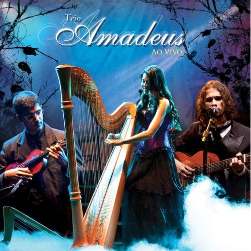 Trio Amadeus ao Vivo by Trio Amadeus