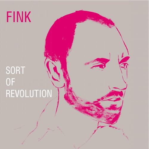 Sort of Revolution von Fink (UK)