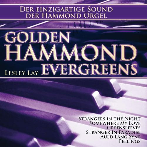 Golden Hammond Evergreens de Lesley Lay