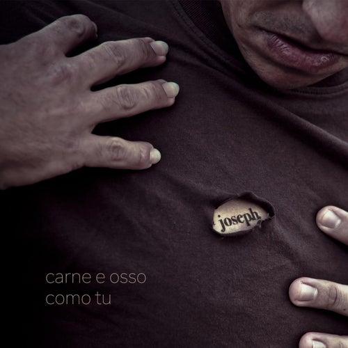 Carne e Osso Como Tu by Various Artists