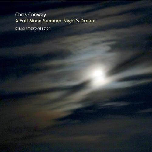 A Full Moon Summer Night's Dream de Chris Conway