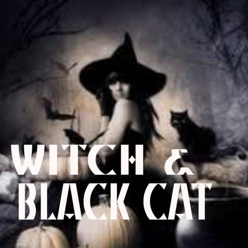 Witch & Black Cat de Various Artists