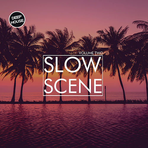 Slow Scene, Vol. 2 di Various Artists