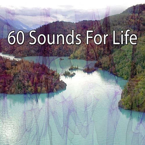 60 Sounds For Life de Massage Tribe
