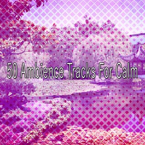 50 Ambience Tracks For Calm de Meditación Música Ambiente