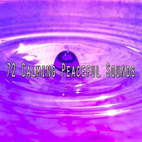 72 Calming Peaceful Sounds de Meditación Música Ambiente