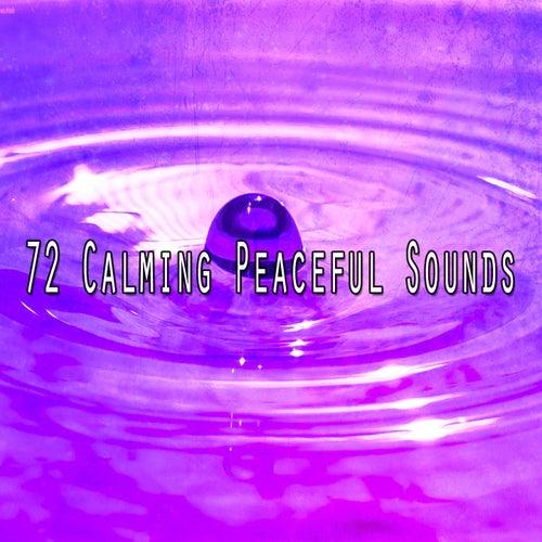 72 Calming Peaceful Sounds de Meditación Música Ambiente