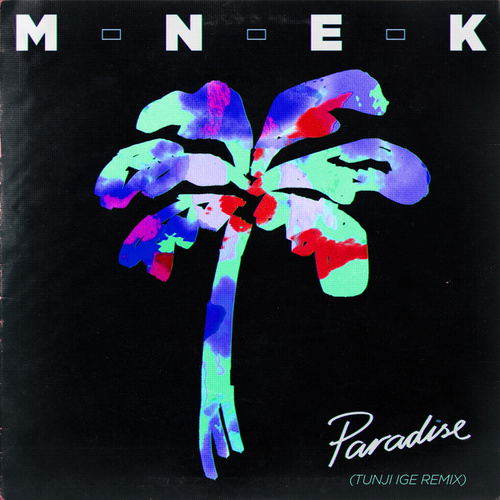 Paradise (Tunji Ige Remix) de MNEK