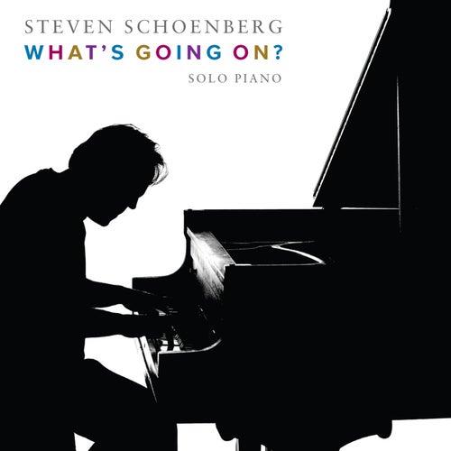 What's Going On? de Steven Schoenberg
