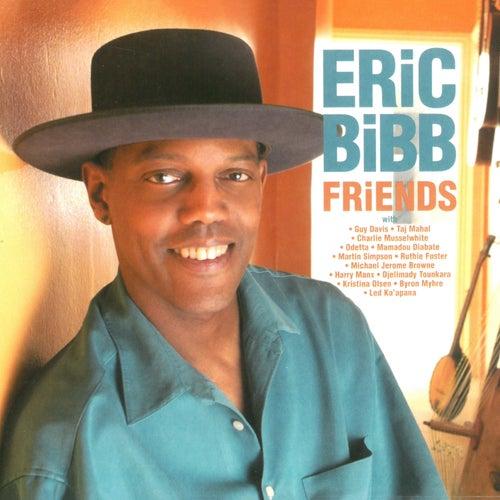 Friends by Eric Bibb