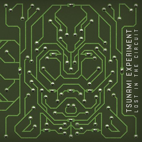 Lost in the Circuit by The Tsunami Experiment