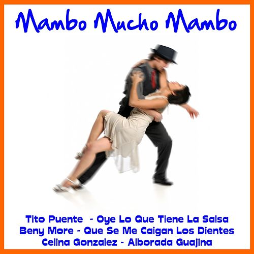 Mambo Mucho Mambo de Various Artists