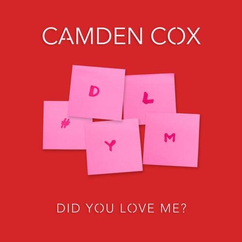 Did You Love Me? de Camden Cox