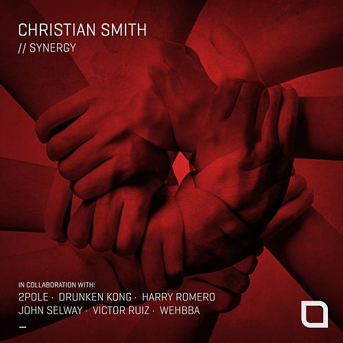 Synergy de Christian Smith