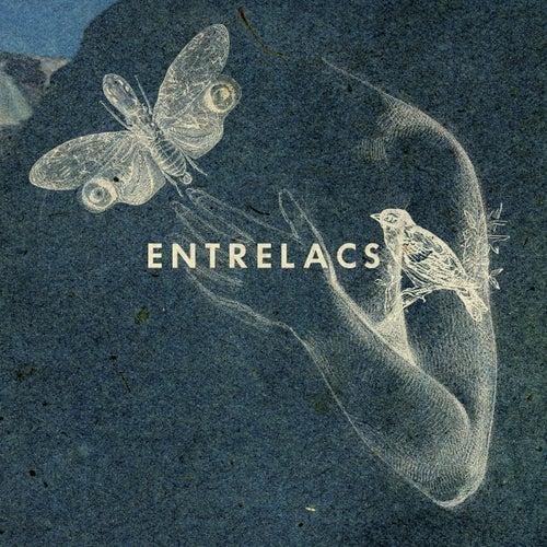 Entrelacs by Entrelacs